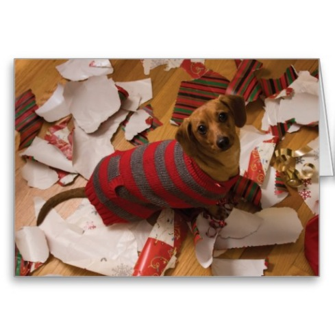 bad_dog_christmas_card-ra27b6c7363a540b8b71750ed471c411a_xvuak_8byvr_512