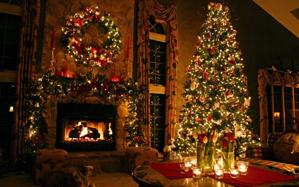 christmas pet disasters | S A V V Y i n S A V A N N A H